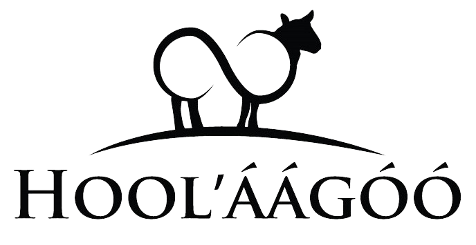Hoolaagoo